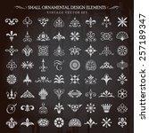 set of small ornamental design... | Shutterstock .eps vector #257189347