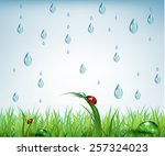 nature spring background with... | Shutterstock .eps vector #257324023