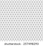 seamless pattern of the... | Shutterstock . vector #257498293