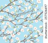Spring Seamless Pattern. Sprin...