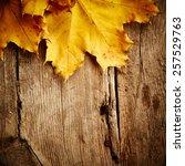 Maple Autumn Leaves On Wooden...