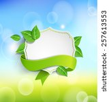 Vintage Frame Wit Green  Ribbo...