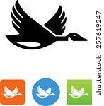 goose icon | Shutterstock .eps vector #257619247