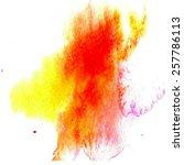 illustration watercolor brush... | Shutterstock .eps vector #257786113
