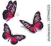 three red butterfly  isolated... | Shutterstock . vector #257944223