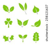 leaf collection. vector... | Shutterstock .eps vector #258121637