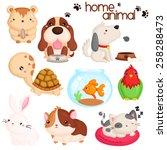 Stock vector home pet vector set 258288473