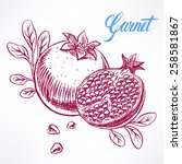 delicious ripe sketch... | Shutterstock .eps vector #258581867