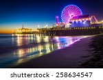 The santa monica pier at night  ...