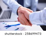 business people shaking hands ... | Shutterstock . vector #258699473