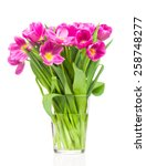 bouquet of tulips on white... | Shutterstock . vector #258748277