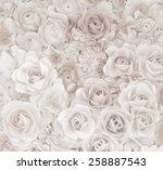 flower paper craft texture... | Shutterstock . vector #258887543