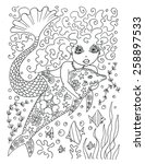 mermaid and dolphin coloring... | Shutterstock . vector #258897533