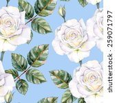 white roses seamless watercolor ... | Shutterstock .eps vector #259071797