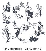 vector floral elements in naive ... | Shutterstock .eps vector #259248443