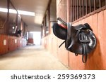 A Leather Saddles Horse In A...