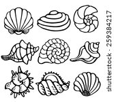sea shells icon set isolated on ... | Shutterstock . vector #259384217