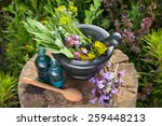 mortar with healing herbs and... | Shutterstock . vector #259448213