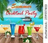 summer cocktail  party poster. | Shutterstock .eps vector #259557803