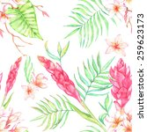 hand drawn seamless watercolor... | Shutterstock .eps vector #259623173