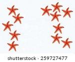 sea stars on white background | Shutterstock . vector #259727477