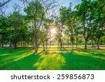 beautiful green lawn in city... | Shutterstock . vector #259856873