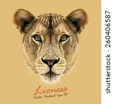 Vector Portrait Of A Lioness....