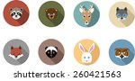 woodland animal flat  long... | Shutterstock .eps vector #260421563