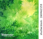 green vector watercolor... | Shutterstock .eps vector #260462153