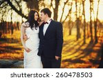 wedding in the sunset | Shutterstock . vector #260478503