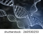 spiral strand of dna on the... | Shutterstock . vector #260530253