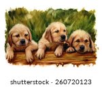 Three Puppies Dog Lovers Lab...