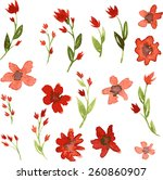 set of watercolor drawing red... | Shutterstock .eps vector #260860907