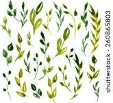set of vector watercolor green... | Shutterstock .eps vector #260865803