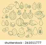 vector set of exotic fruits.... | Shutterstock .eps vector #261011777