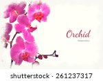 A Watercolour Pink Orchid Over...