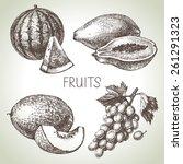 hand drawn sketch fruit set.... | Shutterstock .eps vector #261291323