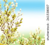floral background willow... | Shutterstock . vector #261538007
