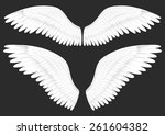 vector realistic illustration... | Shutterstock .eps vector #261604382