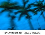 Abstract Background Blur Palm...
