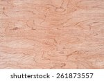 texture of wood background. | Shutterstock . vector #261873557