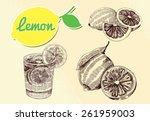 hand drawn lemon | Shutterstock .eps vector #261959003