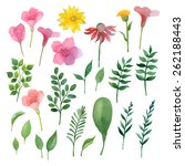 watercolor floral set. floral... | Shutterstock .eps vector #262188443