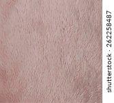 Soft Plush Texture