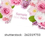 flowers background isolated on... | Shutterstock . vector #262319753