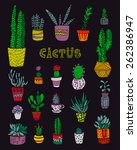 drawing with cacti | Shutterstock . vector #262386947