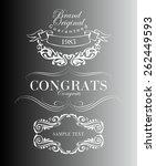 big set of calligraphic... | Shutterstock .eps vector #262449593