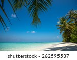 perfect tropical island... | Shutterstock . vector #262595537