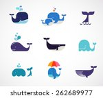 collection of vector whale...
