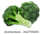 fresh two green broccoli... | Shutterstock . vector #262755653
